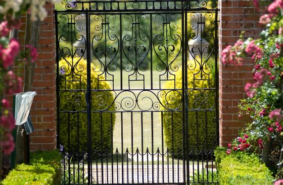 Gate with overhanging flowers in Surrey Garden